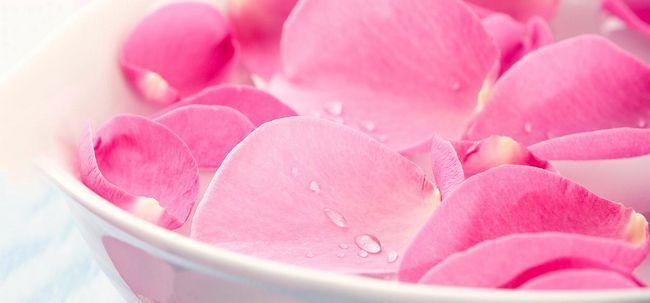 10 benefícios de Rosewater da pele e 6 maneiras de usá-lo Photo