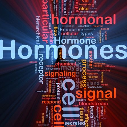 teste de desequilíbrio hormonal