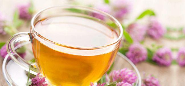 10 benefícios de saúde maravilhosos de chá Alfalfa Photo