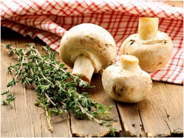 Cogumelos para a pele
