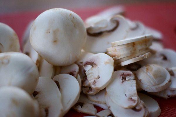 cogumelos brancos