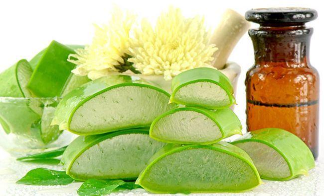 Aloe-Vera benefícios para cabelo