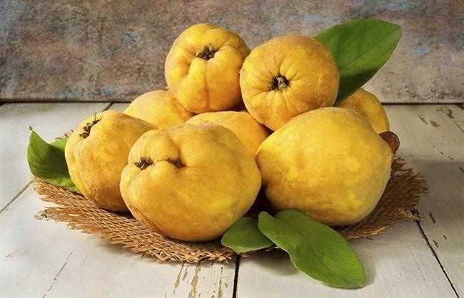 15 benefícios de saúde surpreendentes de Quince Fruit Photo