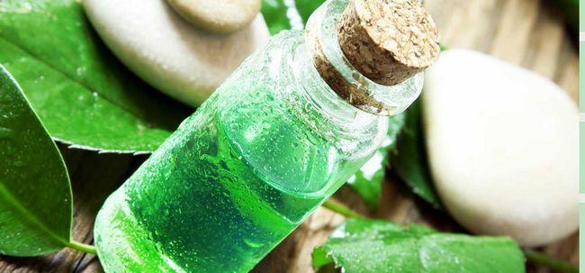 5 métodos simples de usar óleo da árvore do chá para curar a acne Photo