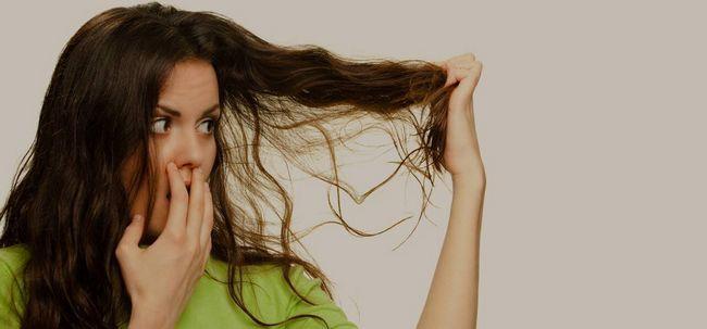 Cuidados para cabelos secos Photo