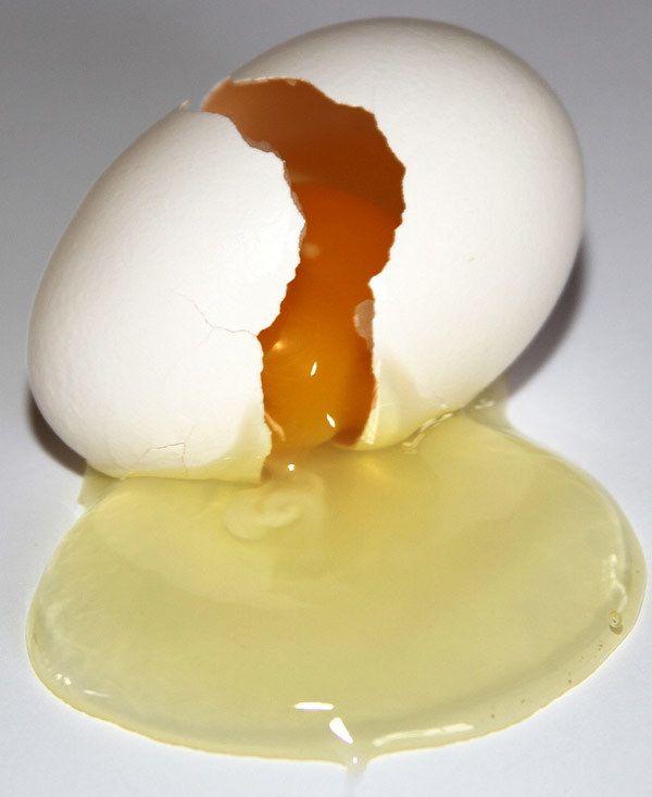 condicionador de cabelo caseiros com ovo