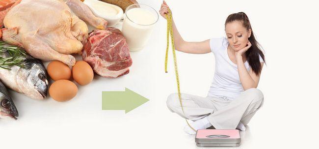 Faz dieta rica em proteínas ajuda a perder peso? Photo