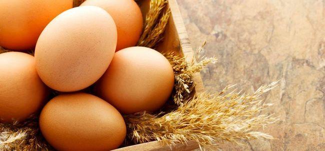 Como o ovo ajuda a perder peso? Photo