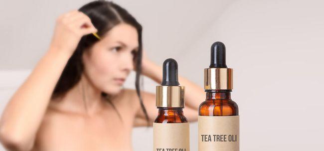 Como usar o óleo da árvore do chá para se livrar dos piolhos? Photo