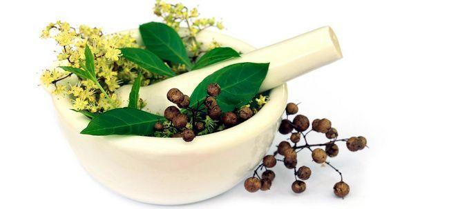 Mehandi Oil - O que é, Como usar e quais são seus benefícios? Photo