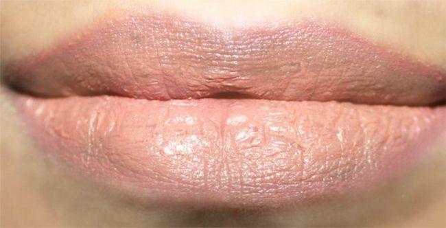 Como fazer nu Lips Makeup Tutorial (5)