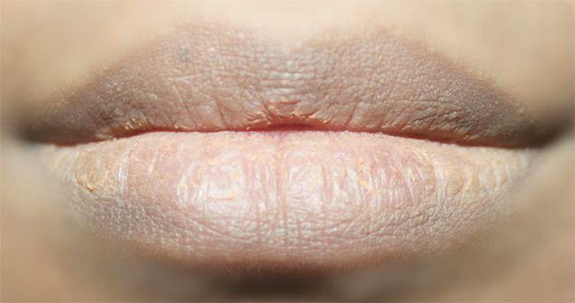 Como fazer nu Lips Makeup Tutorial