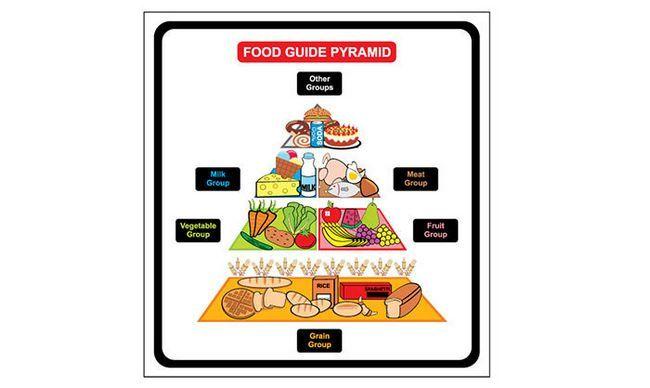 Classificação dos hidratos de carbono dos alimentos