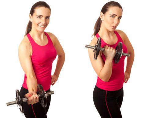 exercício rosca bíceps