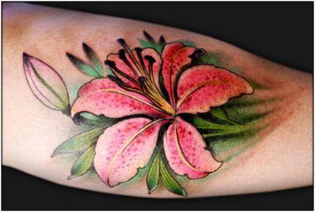 rosa pé tatuagem lírio