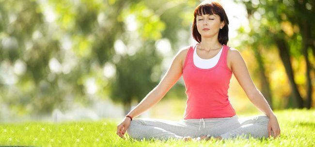 O que é gêmeo Coração meditação? Photo