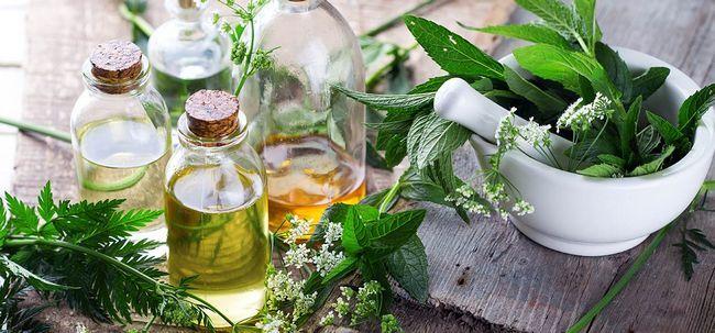 Por que incluir mais ervas sobre produtos químicos em seu regime de beleza? Photo